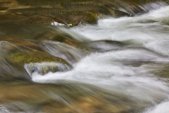 Water flowing around rocks on the River Barle, near Dulverton, Exmoor National Park, Somerset, Great Britain.