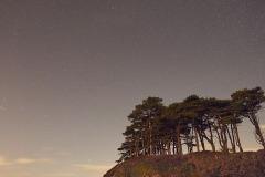 Night sky at Budleigh Salterton, Devon, Great Britain.