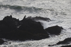 Waves crashing onto rocks at Burgh Island, Bigbury-on-Sea, Devon, Great Britain.