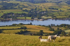 A view of the Teign estuary from Higher Radway Farm, Bishopsteignton, Teignmouth, Devon, Great Britain.