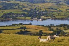 A view of the Teign estuary from Higher Radway Farm, Bishopsteignton, Teignmouth, Devon, Great Britain.