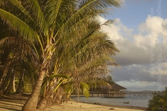 Shoreline scene at Cloud 9, Siargao Island, Mindanao, Philippines.
