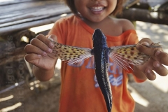 A girl holds up a flying fish for the camera, Paliton Beach, nr San Juan, Siquijor, Philippines.