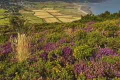 View from Bossington Hill across Porlock and Exmoor National Park, Somerset, Great Britain.