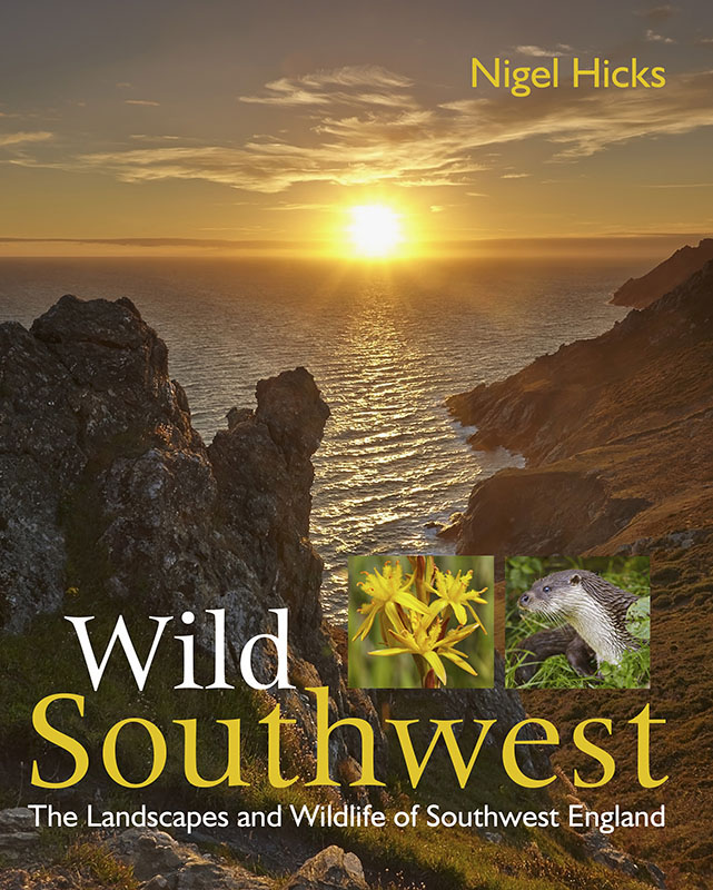 Writing and photography for books: cover for Wild Southwest