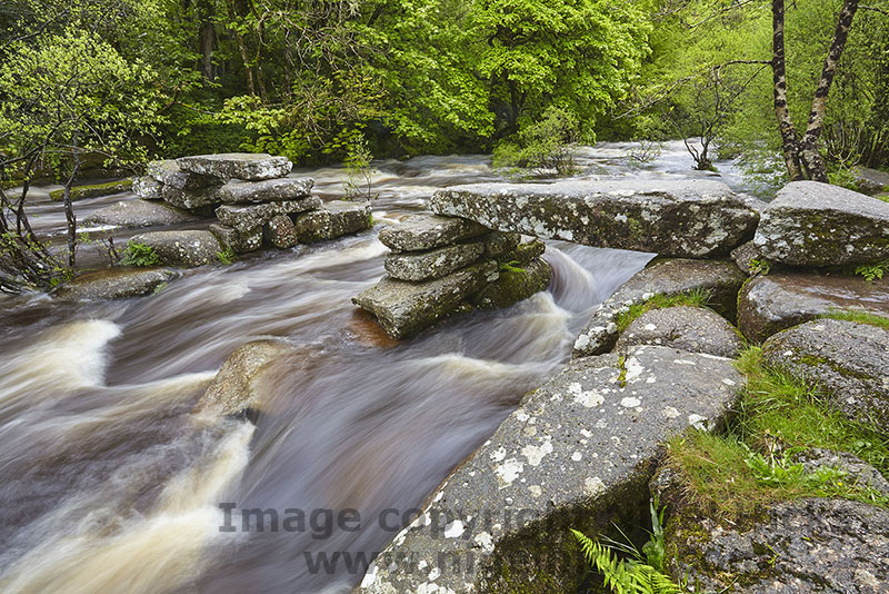 One-day photography courses programme: Dartmoor in spring photography