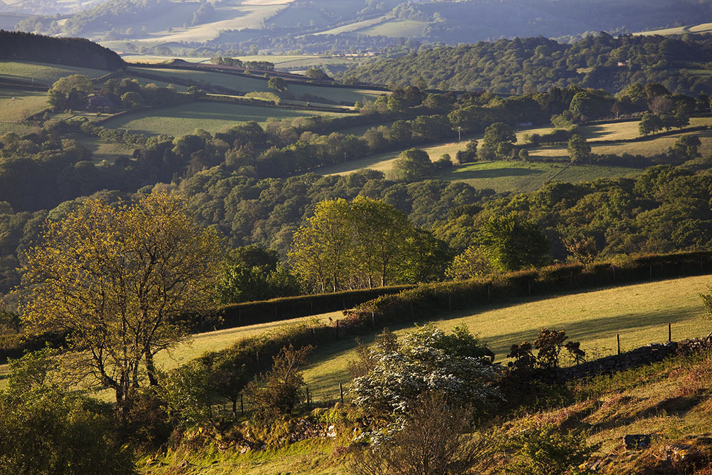 Dart valley landscape greetings card