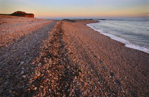 Sunset pebble beach landscape greetings card