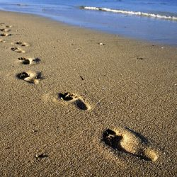 Sandy beach footprints greetings card
