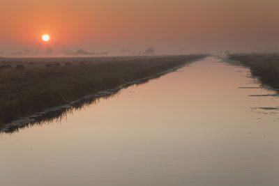 Marshland sunrise greetings card