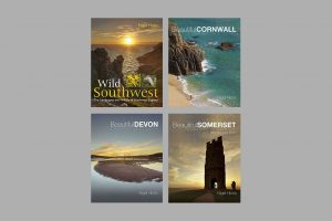 Nigel Hicks's southwest books