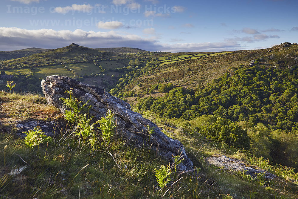A Dartmoor landscape, seen from Bench Tor, looking into the Dart valley. Dartmoor in spring photography course.