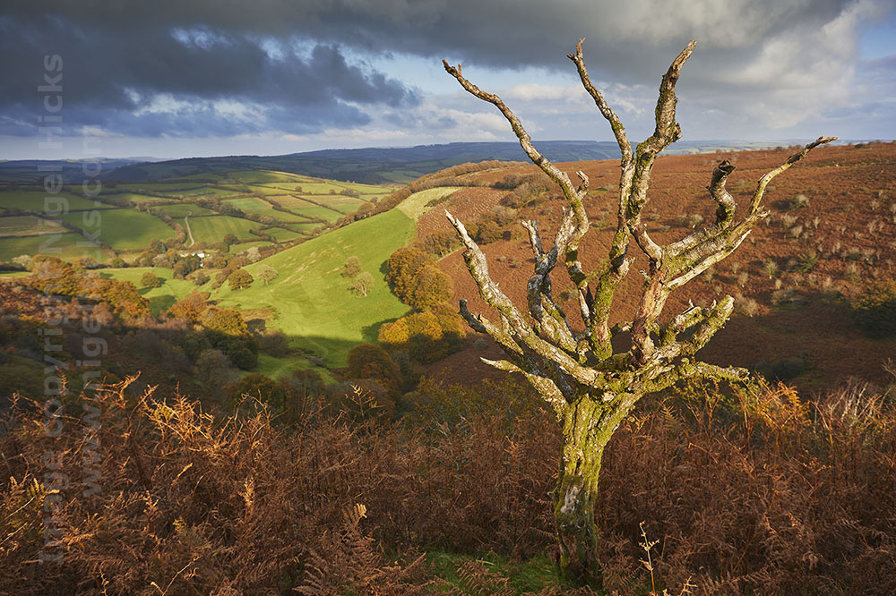 The Punchbowl seen from Winsford Hill; Exmoor